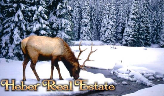 Heber Real Estate And Homes For Sale
